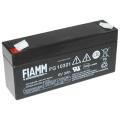 FGS   Fiamm FG10301